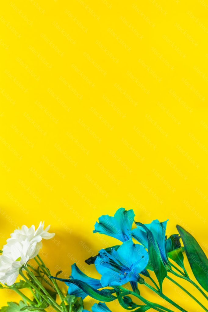 Flower composition on yellow background with copyspace.