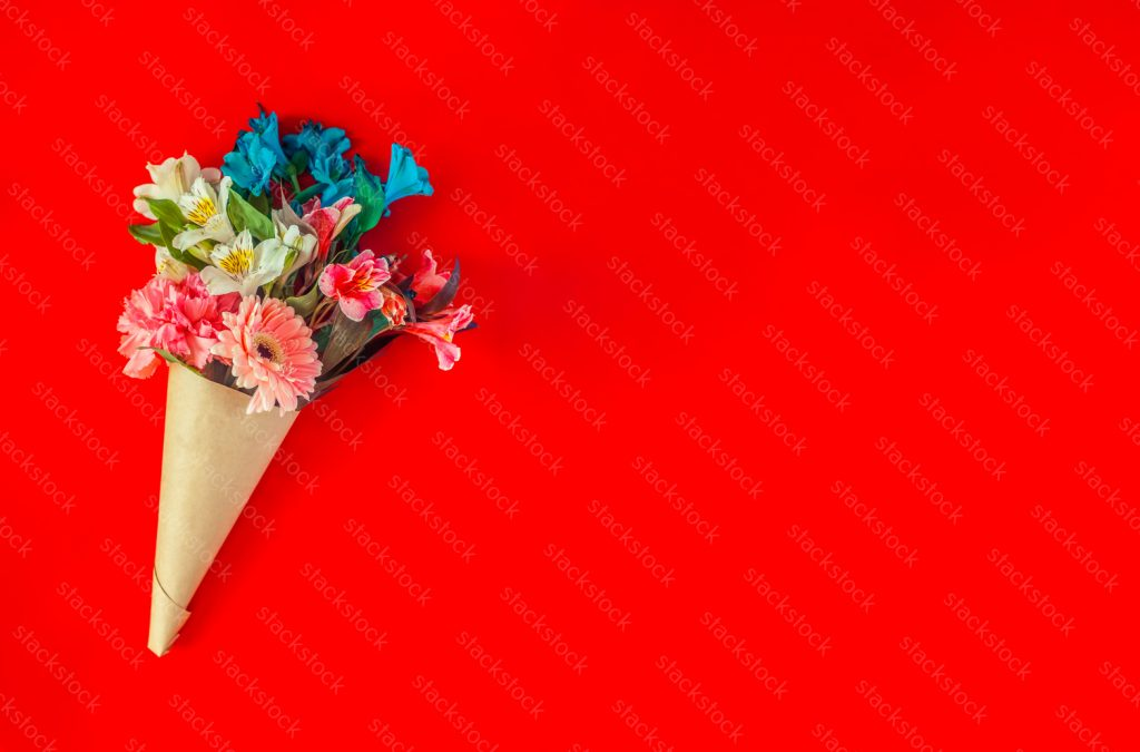 Flower copy space on red background.