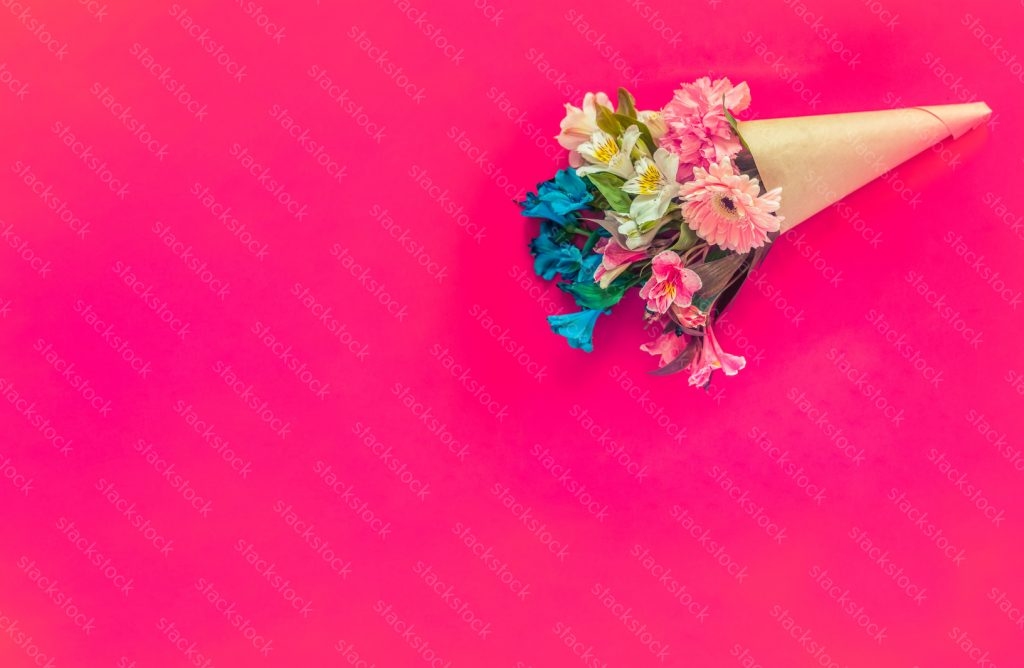 Flower copy space on pink background