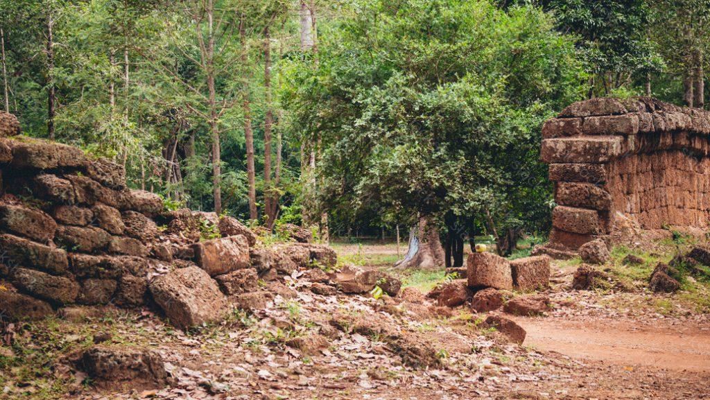 Rock in Angkor Wat in Cambodia